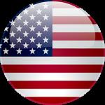 bronzo-normativa-stati-uniti